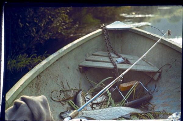 ловля на кораблик на стоячей воде